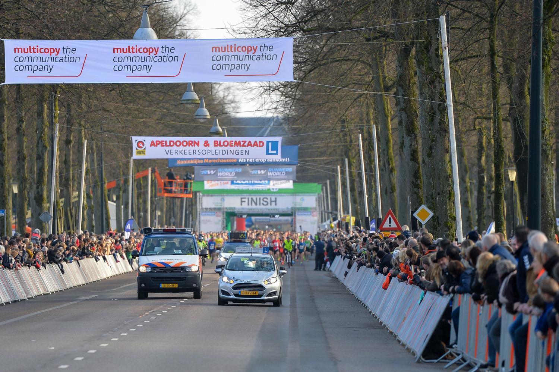 www.Apeldoorn.Media Apeldoorn cover photo