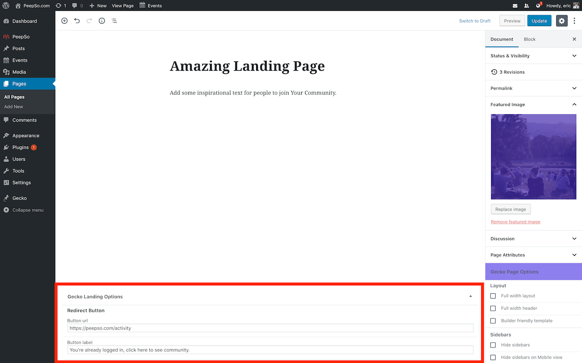 Landing Page Redirect Settings