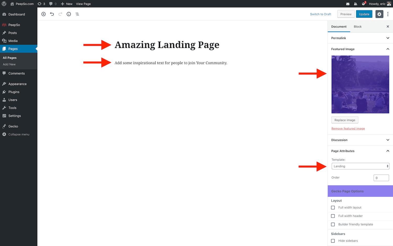 Landing Page Setup with Gecko